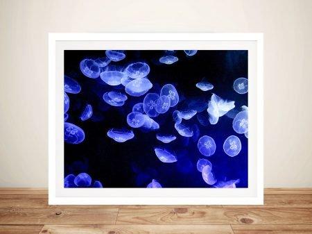 Buy Jellyfish Framed Canvas Wall Art