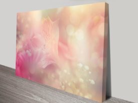pale orchid bloom wall art canvas print