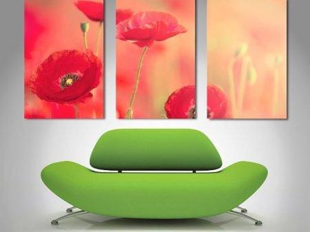 poppy dreams triptych canvas.