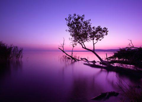 Calm Lake at Dusk Prints Au