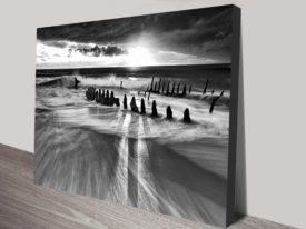 Sea Bones Black and White Ocean Wall Art