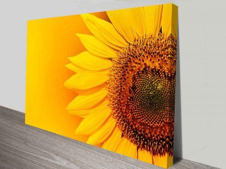 sunny sunflower canvas wall art print