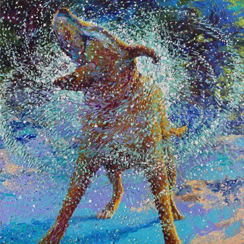 swimin' in ice iris Scott wall art picture