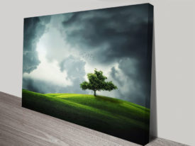 Tree on a Hilltop Stretched Canvas