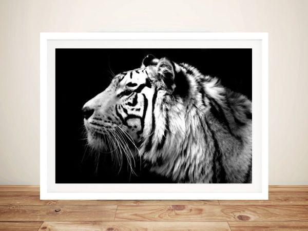 white-tiger-Framed-Wall-Art