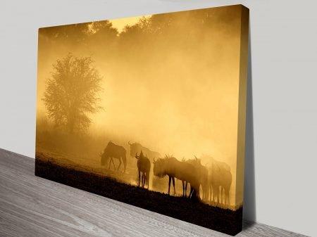 Wildebeest at sunset canvas print