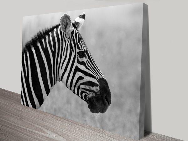Lone Zebra Animal Wall Art on Canvas